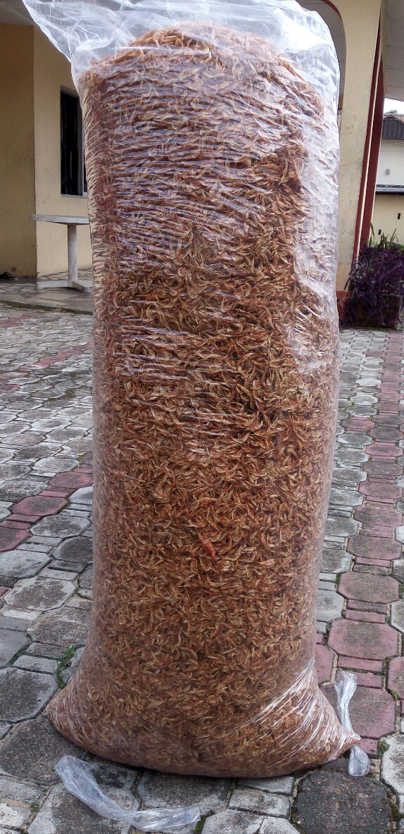 Crayfish (Oron) big bag