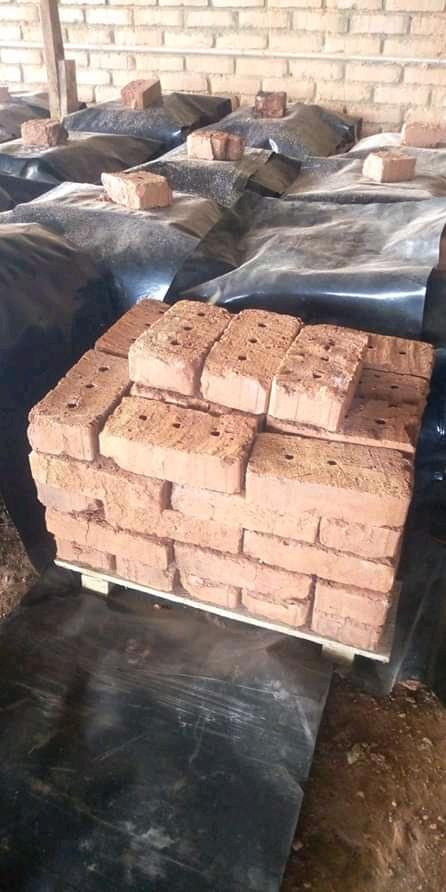 Red/Burnt Bricks