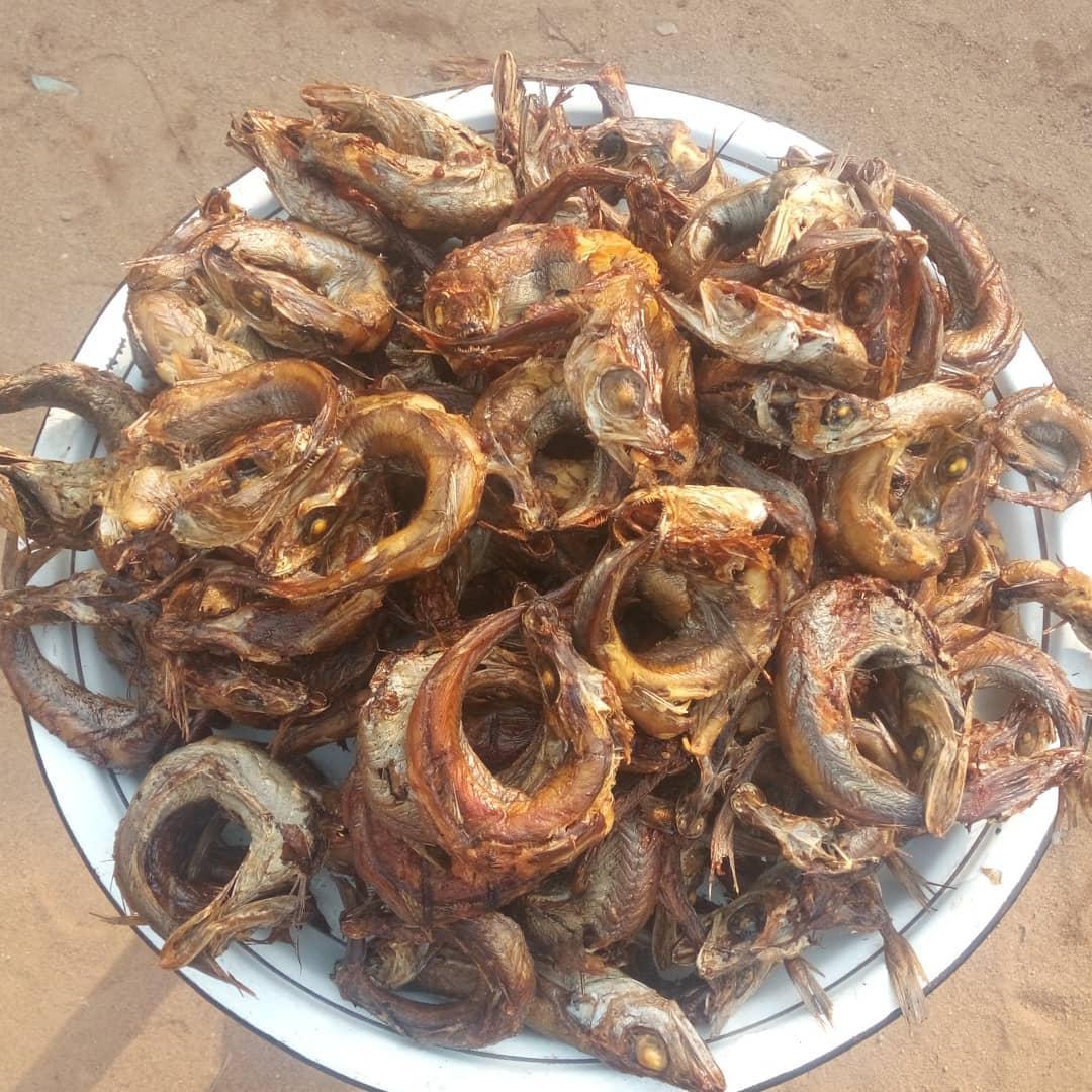 Smoked Hake fish(Eja Panla)